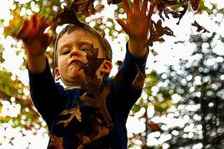 Leafy gavin